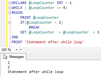 WHILE Loop Break Statement Sql Server