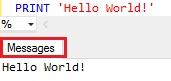 Sql Server PRINT Example1